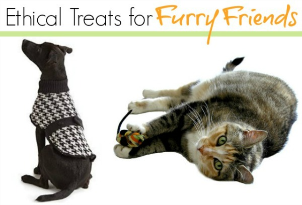 Ethical Pet Accessories