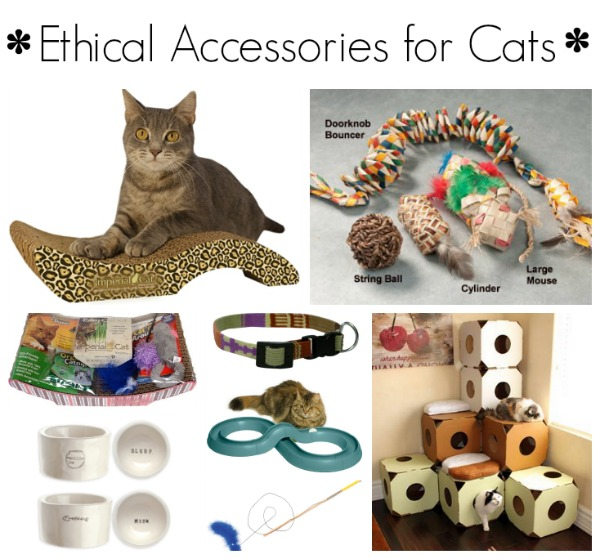 ethical accessories cats-1