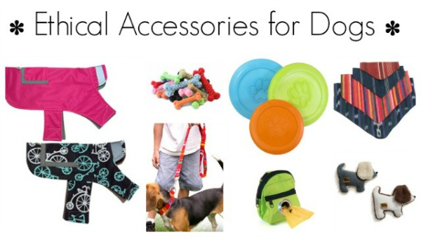 ethical accessories for dogs